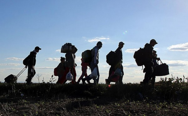 Refugees walk towards the Serbian border with Croatia in the hope of getting a bus further north in Europe. Photo by The Telegraph.